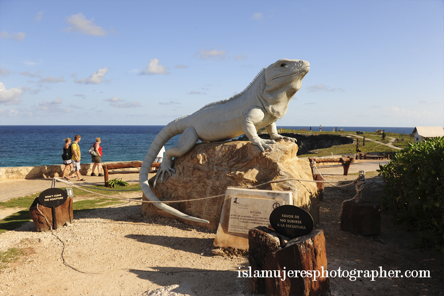 isla mujeres iguana monument photo